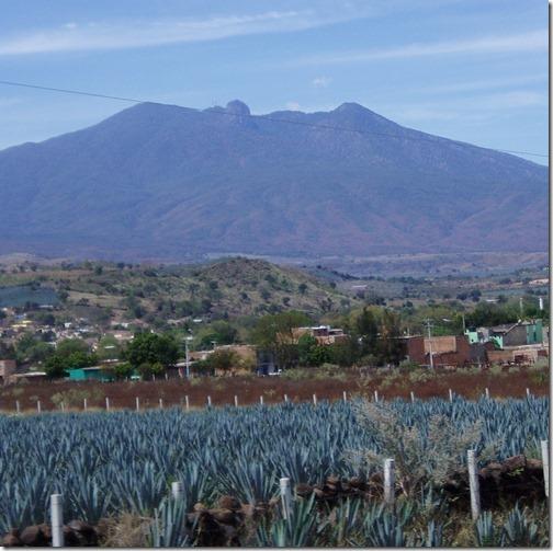 【世界の快道でイク!メキシコ(Mexico)編】風渡る竜舌蘭畑でキミとテキーラで乾杯!01テキーラ山と竜舌蘭畑Agave_fields_mountain