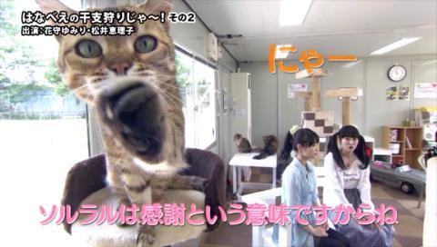 【音泉通販特典】はなべえの干支狩りじゃ~! ダイジェスト映像