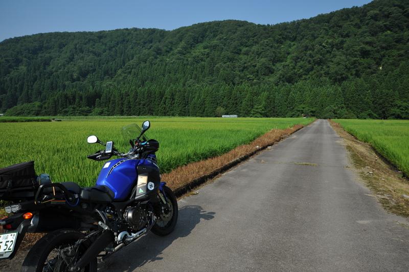 早朝林道ツー (5)