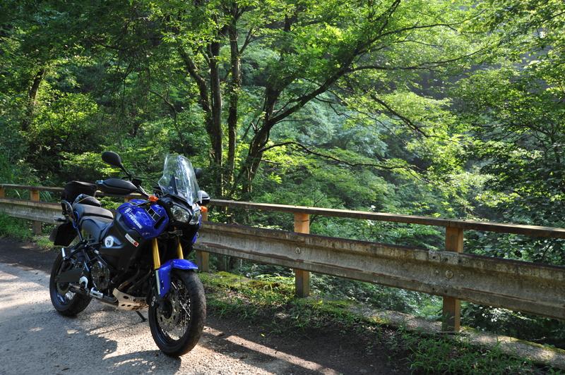 早朝林道ツー (2)