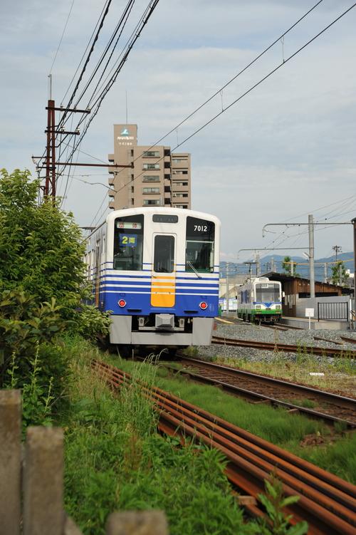 DSC_7026.jpg