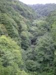 緑の谷jpg