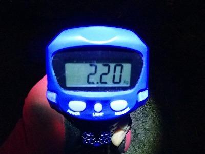 P7140622.jpg