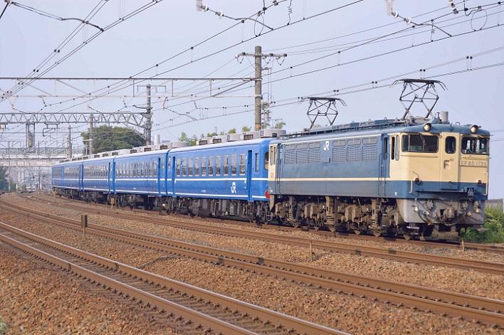 DSC_4175-2.jpg