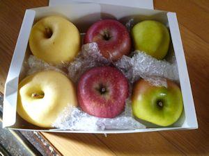 リンゴ、美味しかったです♪