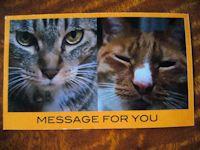 オリジナルなメッセージカード