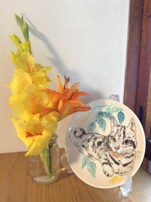 今朝のしまの花