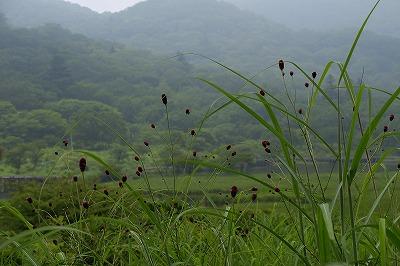 s-08・05赤城山 (26)
