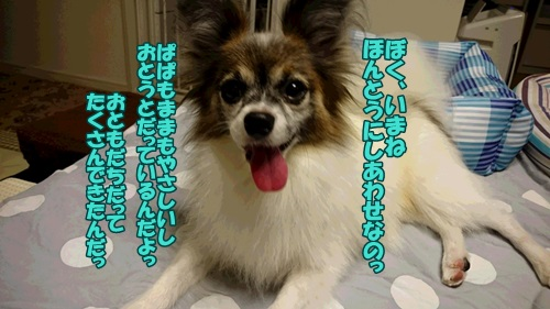 DSC_05610.jpg
