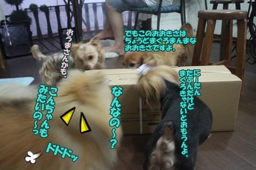 IMG_50620.jpg
