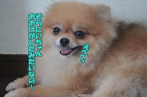 IMG_51280.jpg