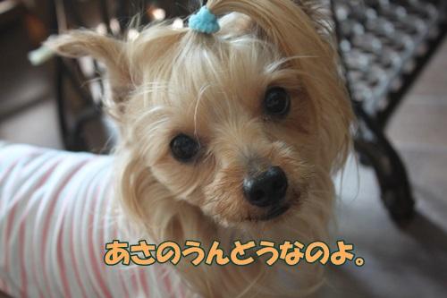 IMG_51780.jpg