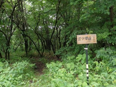 150620三ッ峰山~榛名富士~蛇ヶ岳 (1)s