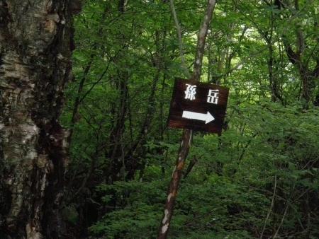 150704二ッ岳 (1)s