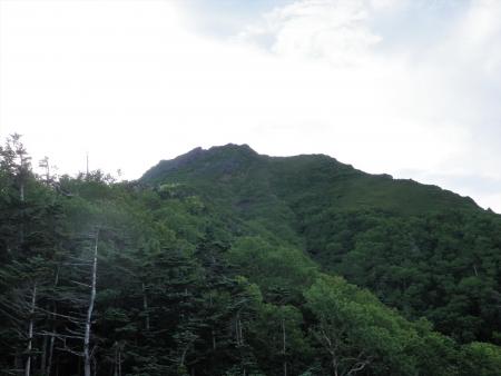 150725御小屋尾根~阿弥陀~赤岳 (16)s