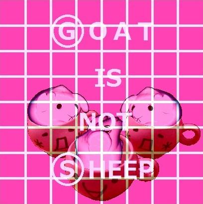 G is not S 04