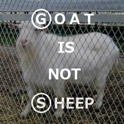 G is not S 02