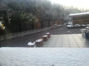 150102雪