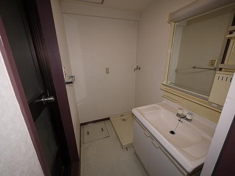 ビラ・ニューロード302洗面所