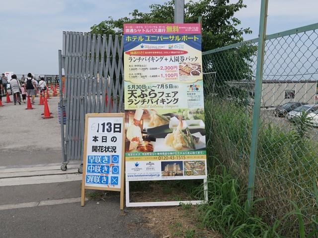 大阪舞洲ゆり園 (3)