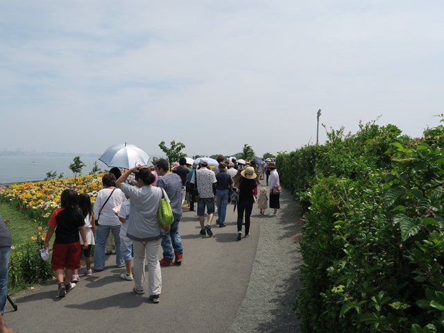 大阪舞洲ゆり園 (14)
