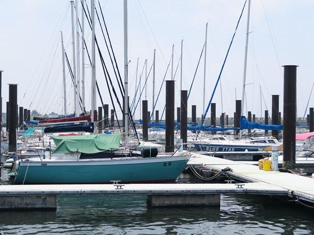 北港ヨットハーバー (11)