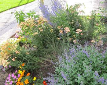 garden07011502.jpg
