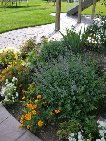 garden08081501.jpg