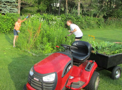 weeds07101503.jpg