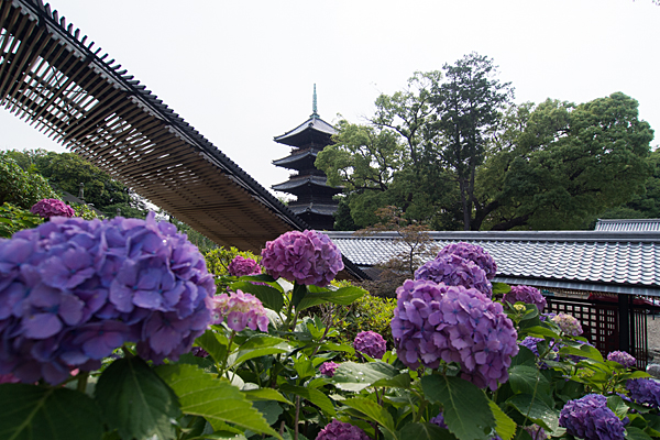 興正寺-1