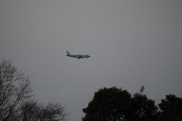 飛行機空-9