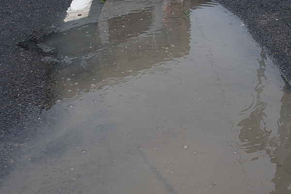 雨の日散歩-10
