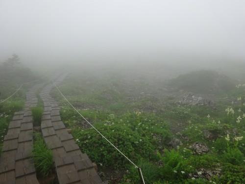2015年7月28日早池峰山㉘_1