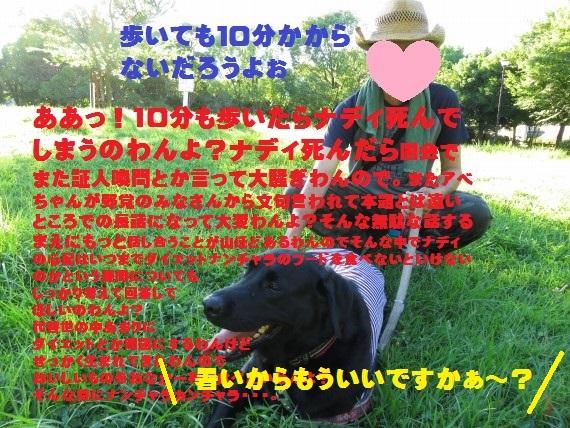 20150804-04.jpg