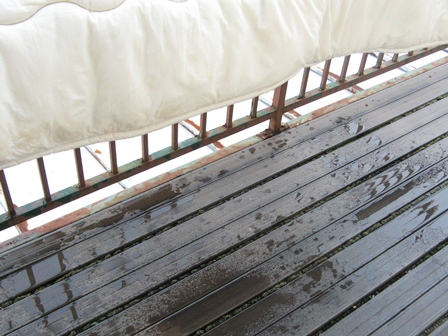 敷布団の洗濯-7 ベランダで干す(水滴が落ちている様子)