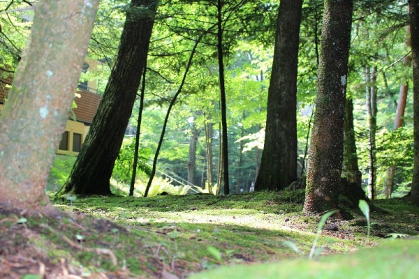MikasaHotel_002_org.jpg