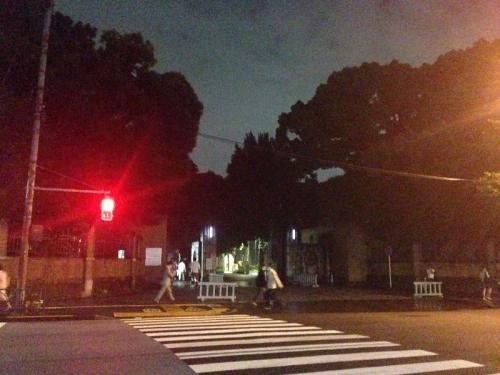 YojinboHongo_010_org.jpg