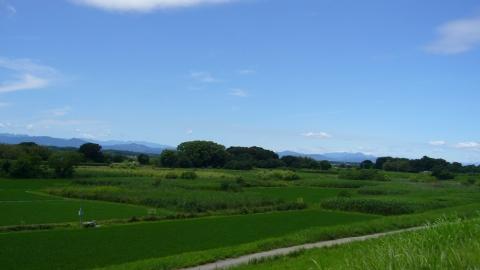 吉見総合運動公園から北上(荒川CR)牧歌的な風景。