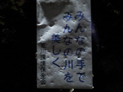 IMGP8875ぬ (3)