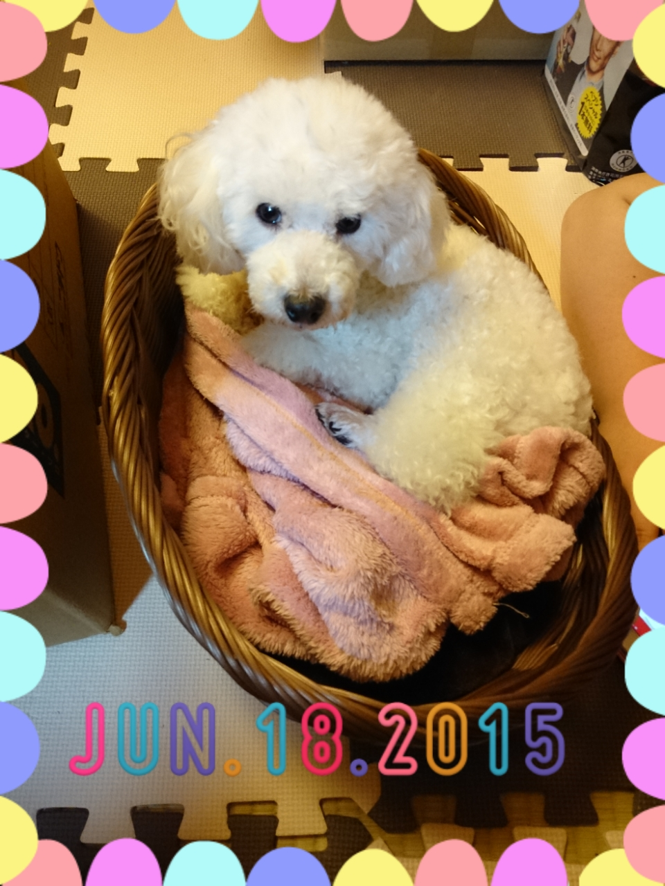 2015-06-18-18-47-26_deco.jpg