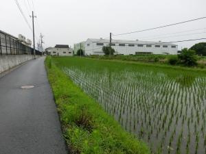 20150704_07田園風景