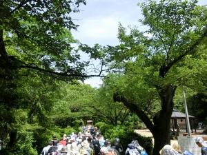20150712_08五月山公園