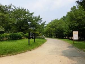 20150802_07大仙公園