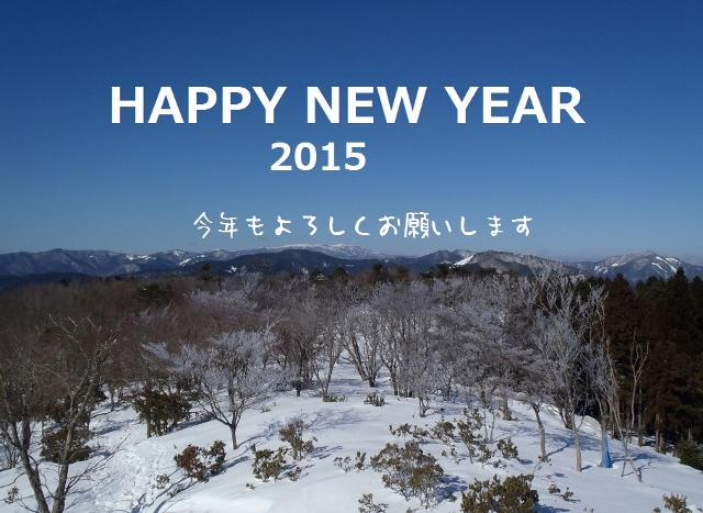 2015new year (640x467)