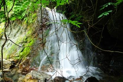 雨乞い9無名滝下段