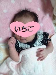 いちご5150626_192348