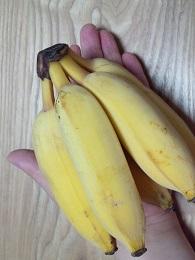 バナップル手のひらサイズ