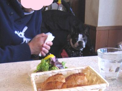 伊豆高原 お正月旅行