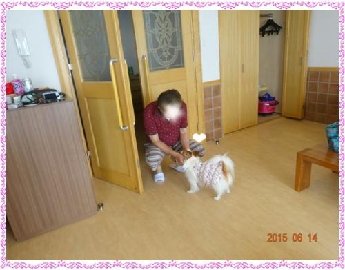 DSC03841.jpg