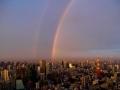 東京タワーとダブル虹